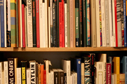 A bookshelf containing two rows of books.