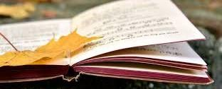 an open book with an autumn leaf